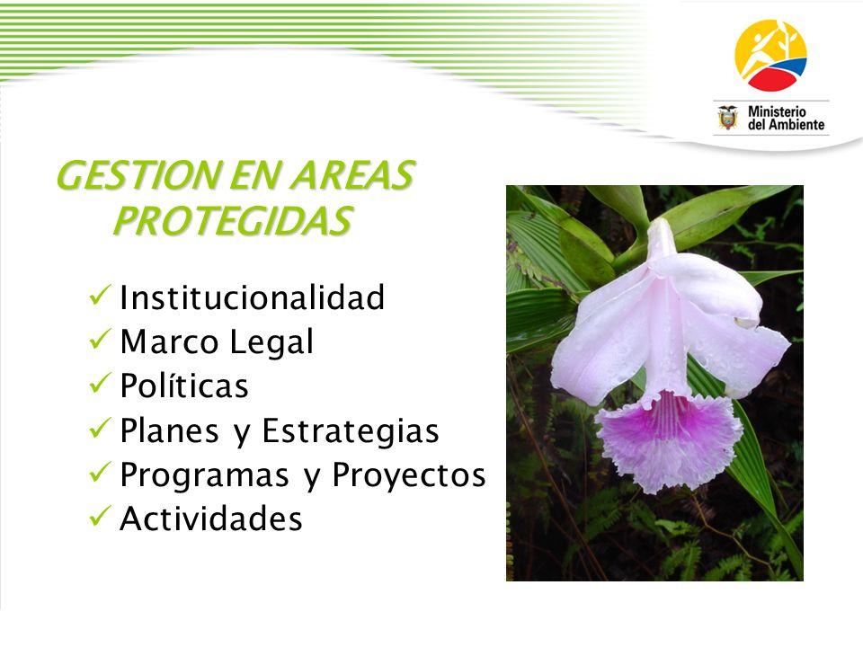 GESTION EN AREAS PROTEGIDAS