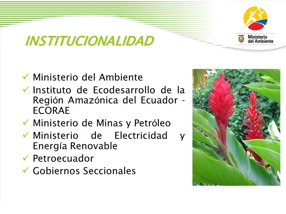 INSTITUCIONALIDAD Ministerio del Ambiente