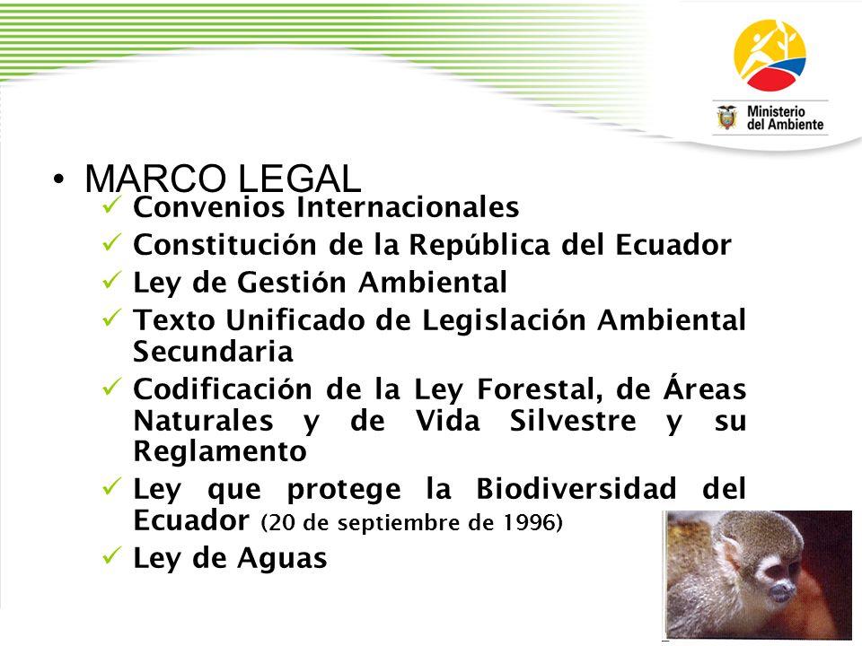 MARCO LEGAL Convenios Internacionales