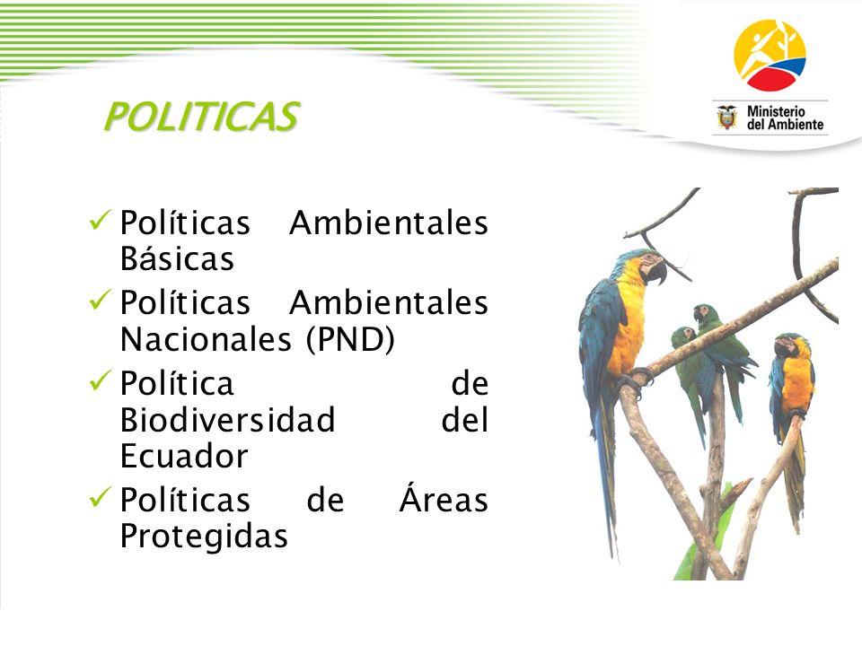 POLITICAS Políticas Ambientales Básicas