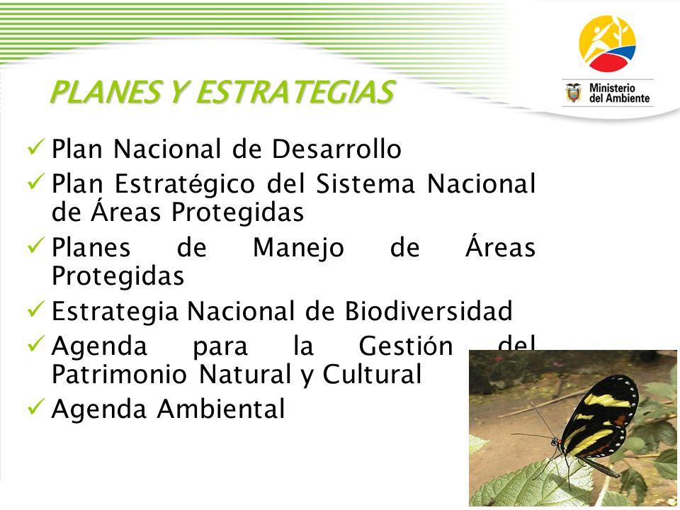 PLANES Y ESTRATEGIAS Plan Nacional de Desarrollo