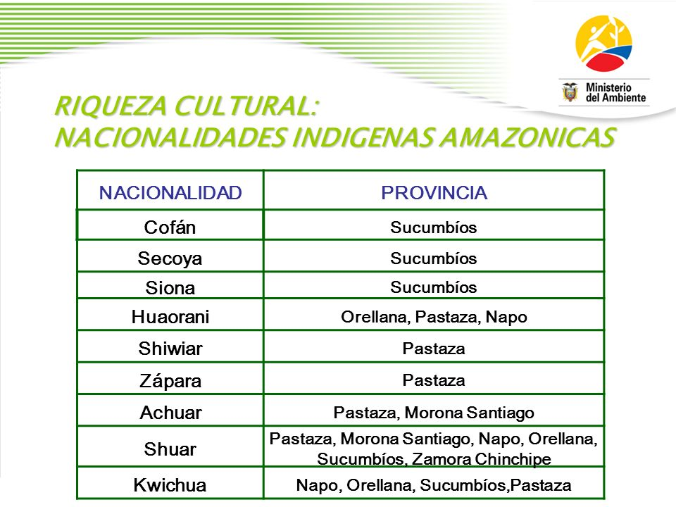 NACIONALIDADES INDIGENAS AMAZONICAS
