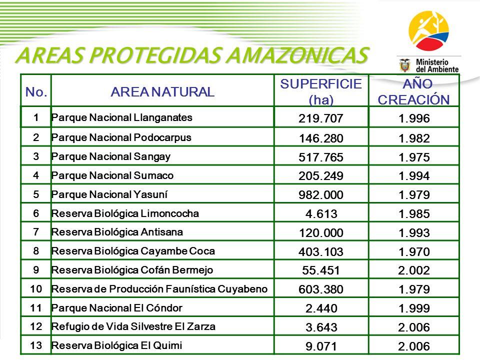 AREAS PROTEGIDAS AMAZONICAS