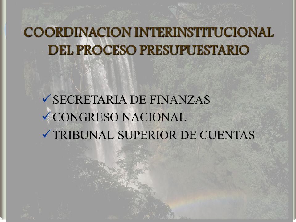 COORDINACION INTERINSTITUCIONAL DEL PROCESO PRESUPUESTARIO