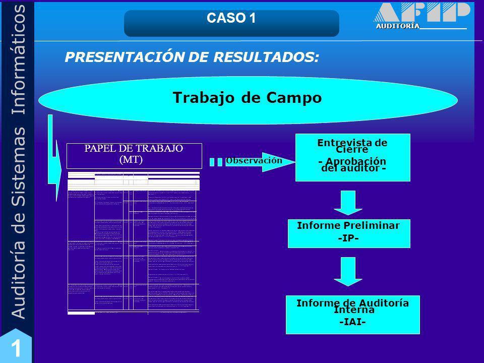Trabajo de Campo CASO 1 PRESENTACIÓN DE RESULTADOS: PAPEL DE TRABAJO