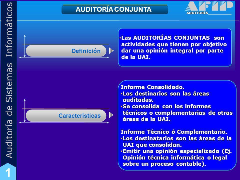 AUDITORÍA CONJUNTA Definición Características