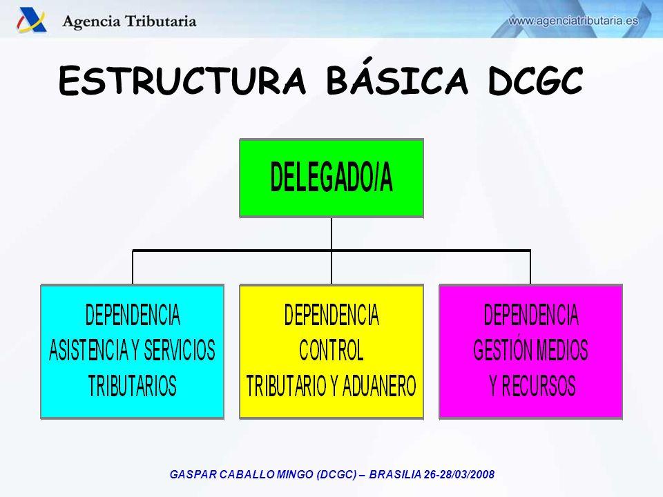 ESTRUCTURA BÁSICA DCGC