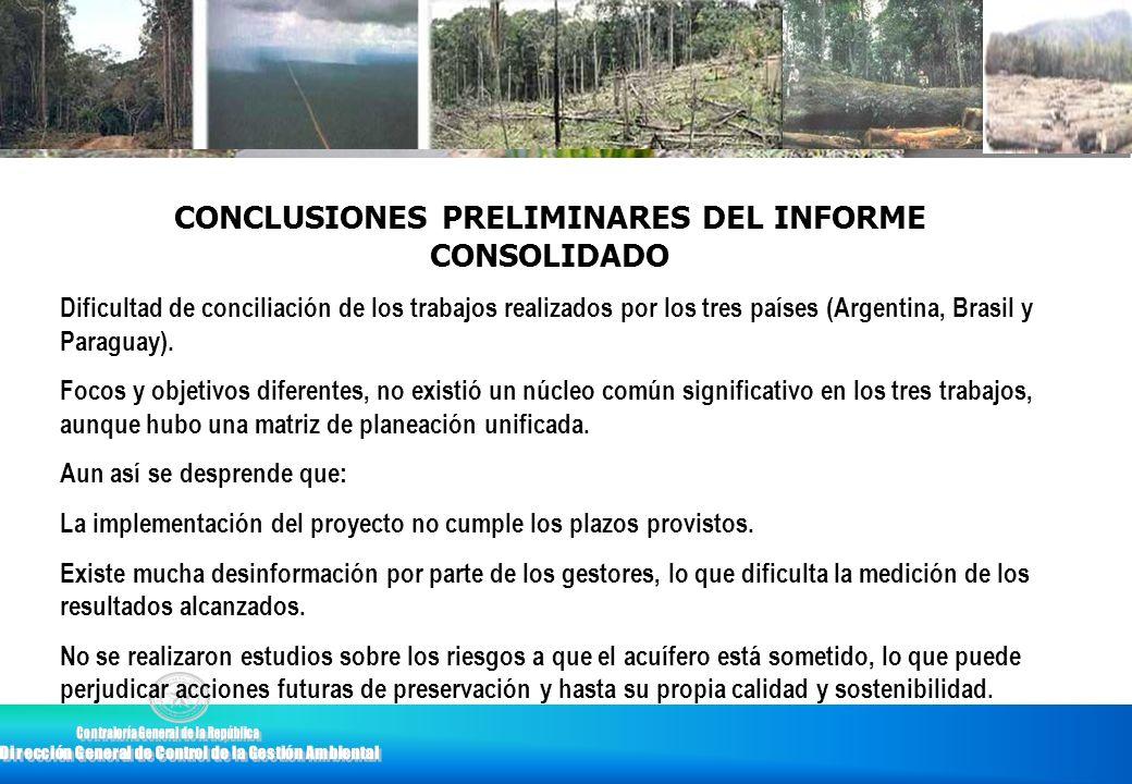 CONCLUSIONES PRELIMINARES DEL INFORME CONSOLIDADO