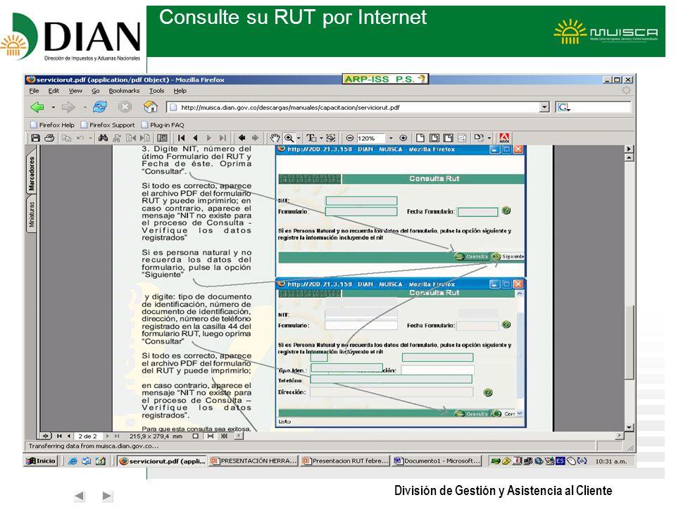 Consulte su RUT por Internet