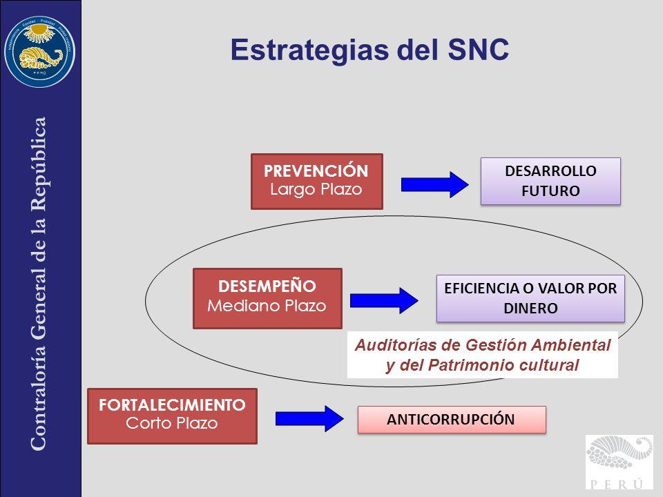 Estrategias del SNC PREVENCIÓN DESARROLLO FUTURO Largo Plazo DESEMPEÑO