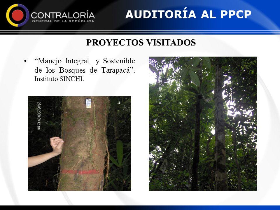 AUDITORÍA AL PPCP PROYECTOS VISITADOS