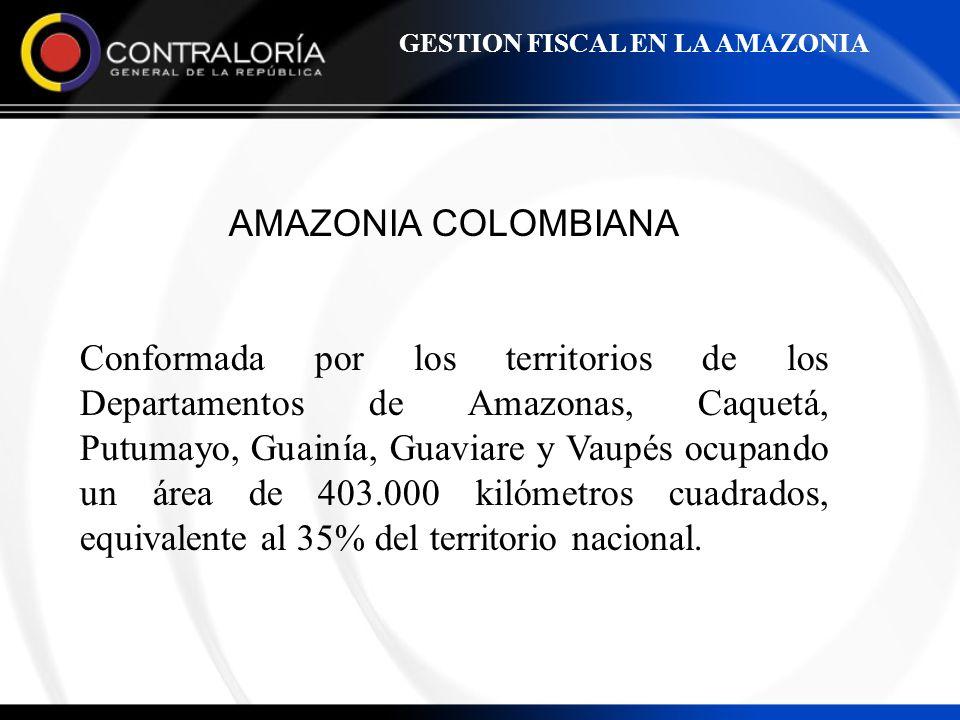 GESTION FISCAL EN LA AMAZONIA