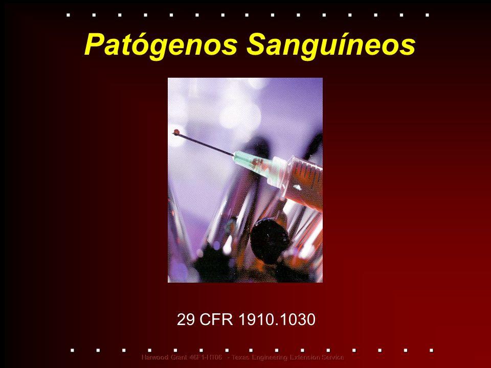 Patógenos Sanguíneos 29 CFR 1910.1030