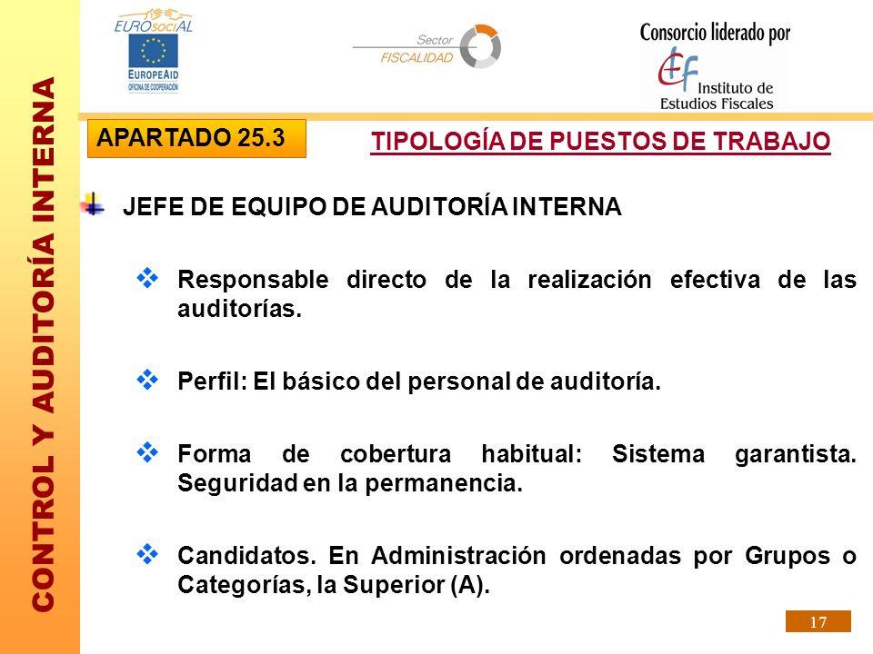 APARTADO 25.3TIPOLOGÍA DE PUESTOS DE TRABAJO. JEFE DE EQUIPO DE AUDITORÍA INTERNA.