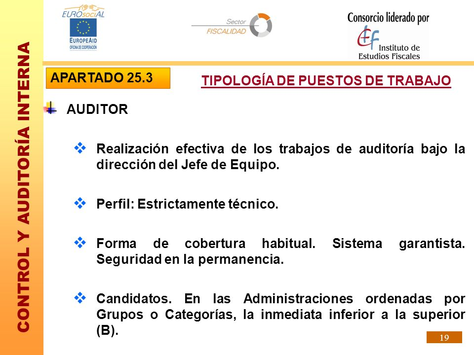 APARTADO 25.3 TIPOLOGÍA DE PUESTOS DE TRABAJO. AUDITOR. Realización efectiva de los trabajos de auditoría bajo la dirección del Jefe de Equipo.