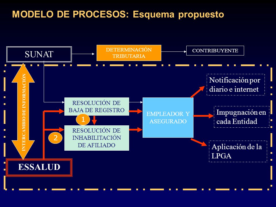 MODELO DE PROCESOS: Esquema propuesto
