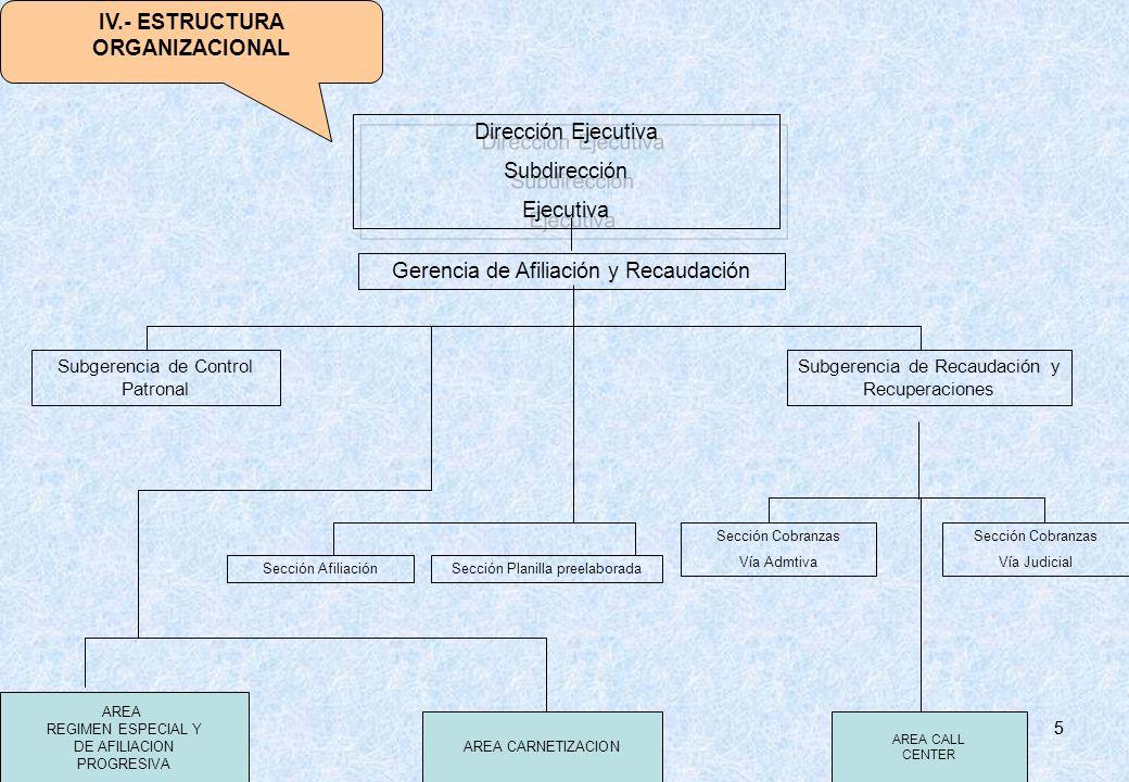 IV.- ESTRUCTURA ORGANIZACIONAL
