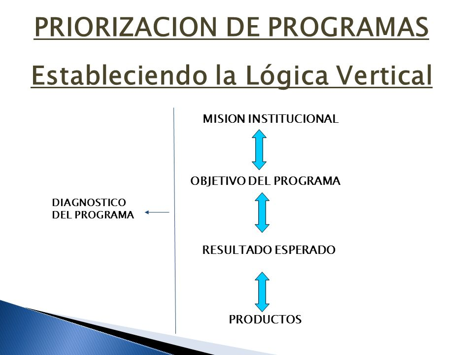 PRIORIZACION DE PROGRAMAS Estableciendo la Lógica Vertical