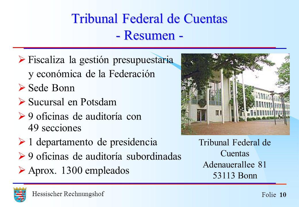 Tribunal Federal de Cuentas - Resumen -