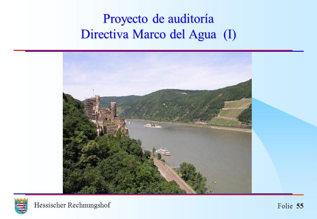 Proyecto de auditoría Directiva Marco del Agua (I)
