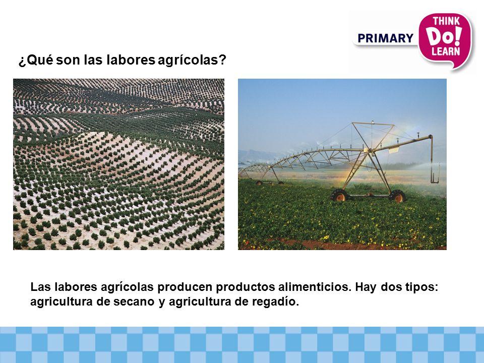 ¿Qué son las labores agrícolas