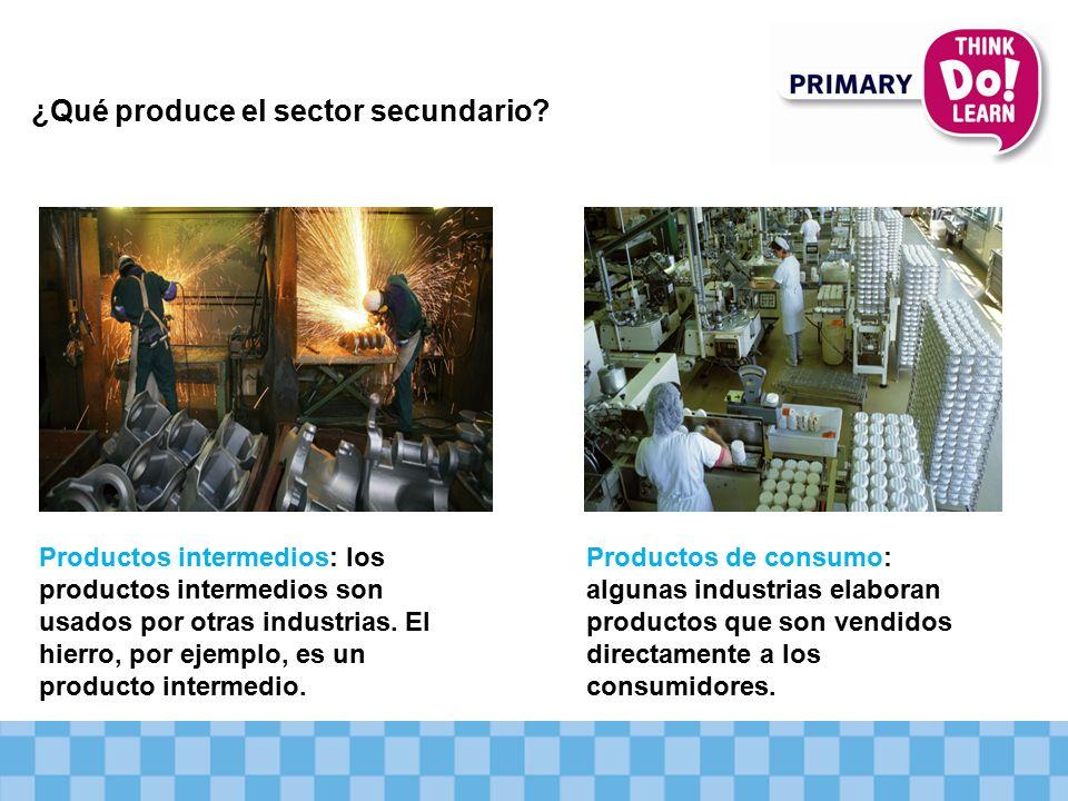 ¿Qué produce el sector secundario