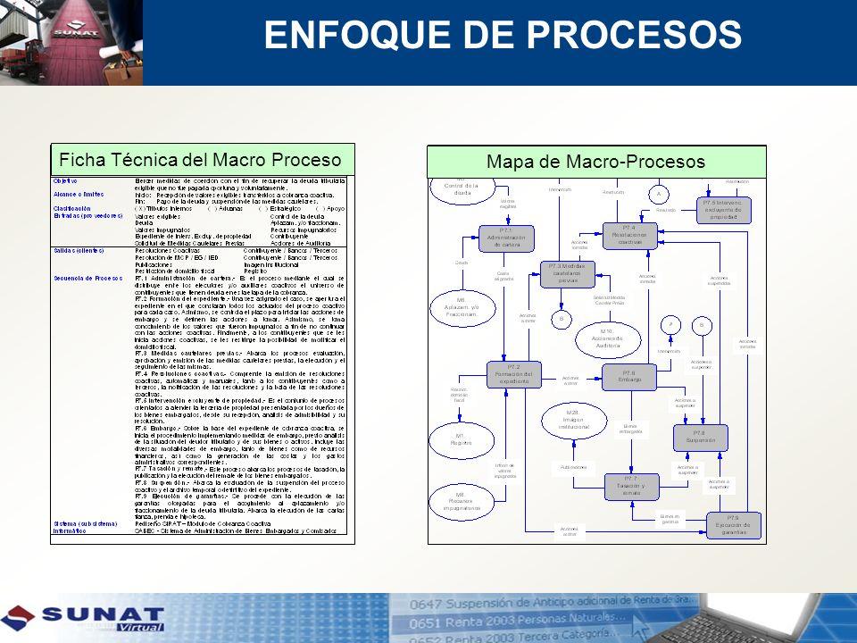 Mapa de Macro-Procesos