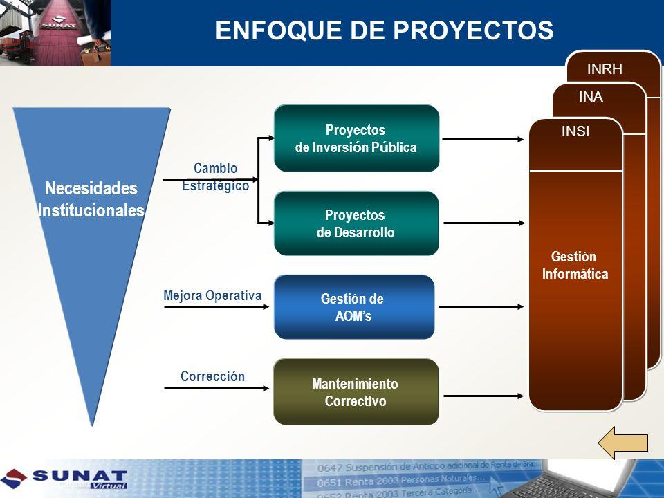 ENFOQUE DE PROYECTOS Necesidades Institucionales INRH INA Proyectos