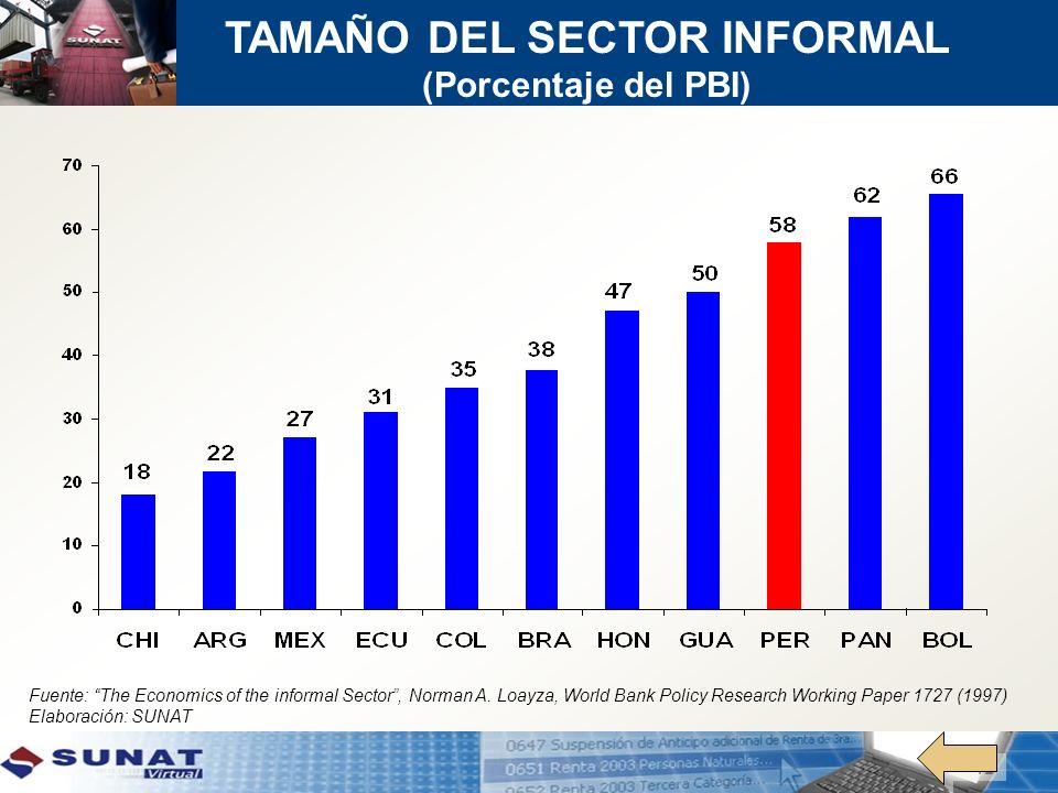 TAMAÑO DEL SECTOR INFORMAL (Porcentaje del PBI)