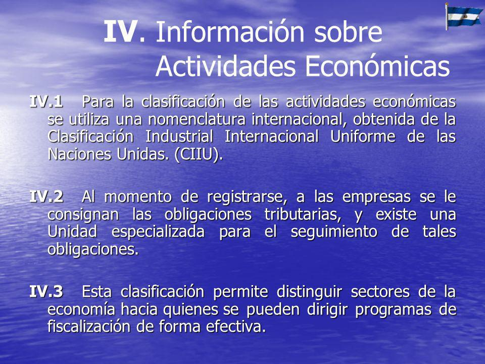 IV. Información sobre Actividades Económicas
