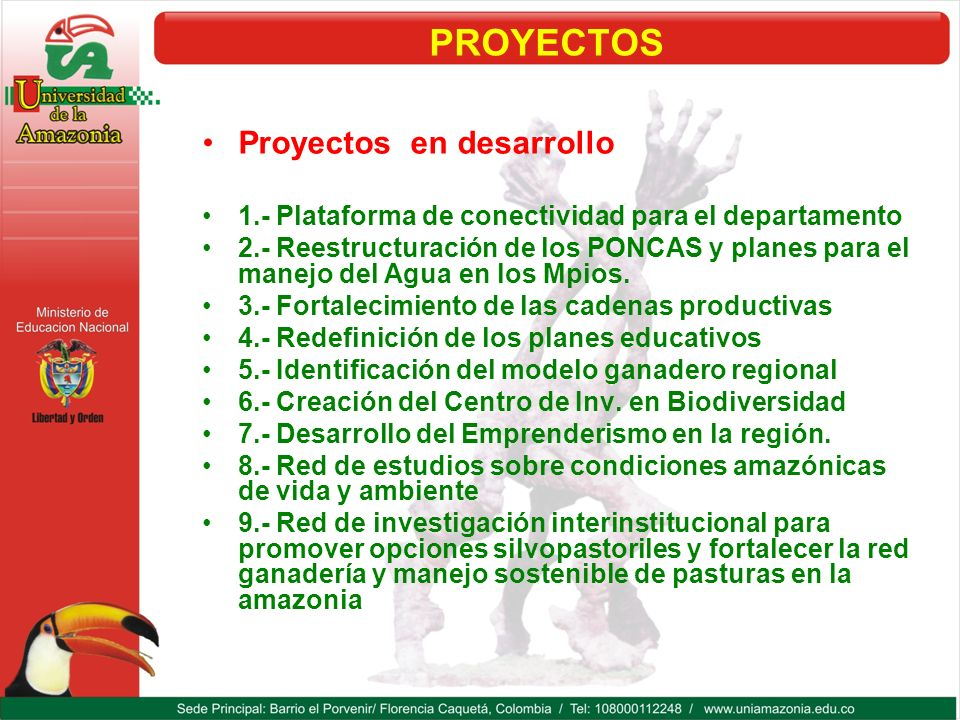 PROYECTOS Proyectos en desarrollo