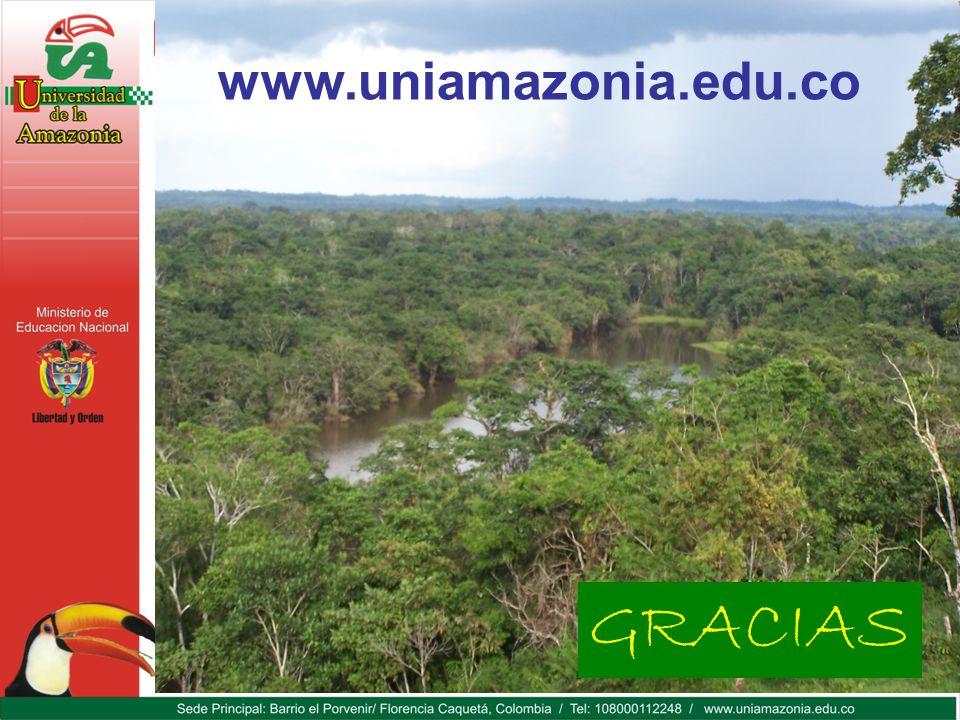 www.uniamazonia.edu.co GRACIAS