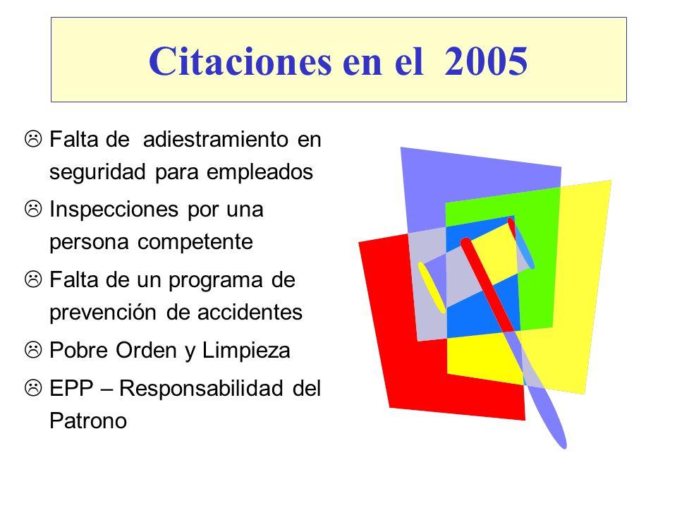 Citaciones en el 2005 Falta de adiestramiento en seguridad para empleados. Inspecciones por una persona competente.