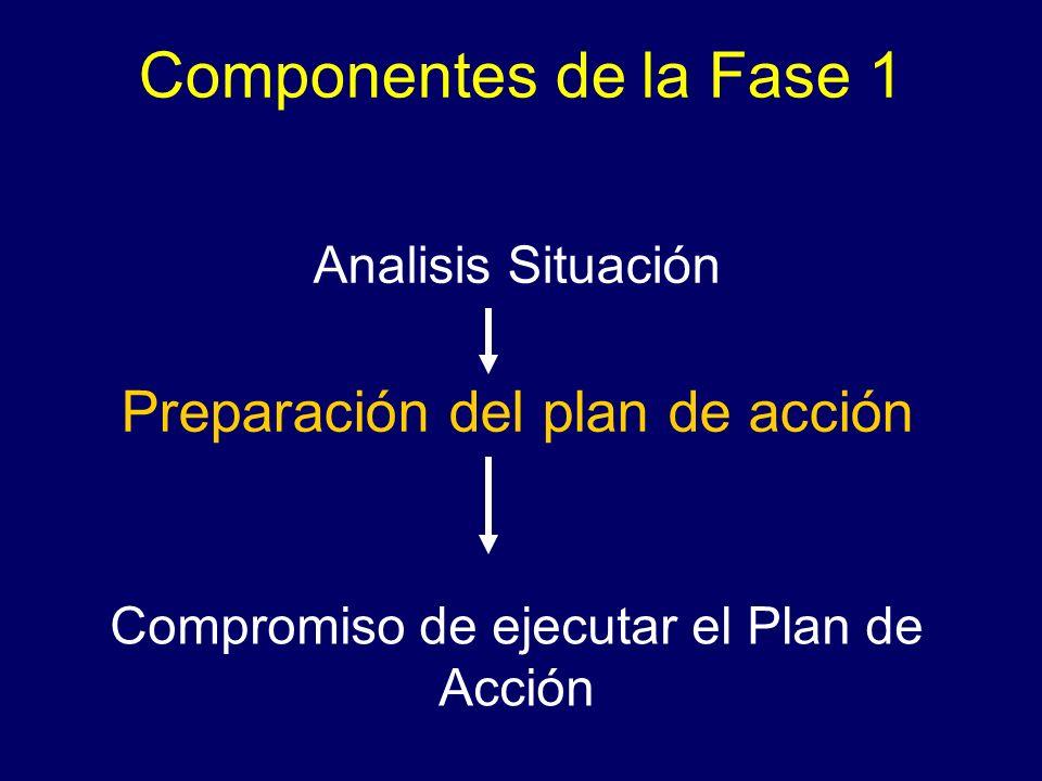 Analisis Situación Preparación del plan de acción