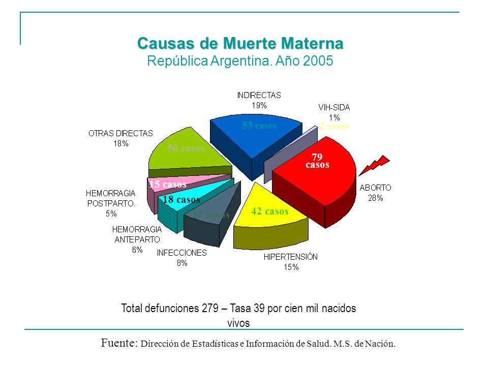 Causas de Muerte Materna República Argentina. Año 2005