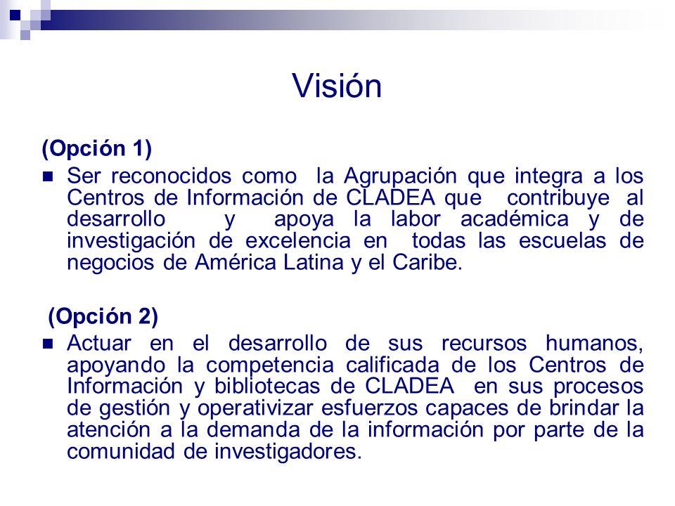 Visión (Opción 1)