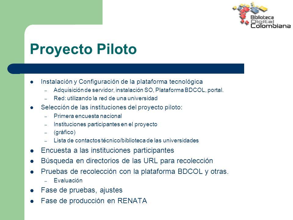 Proyecto Piloto Encuesta a las instituciones participantes