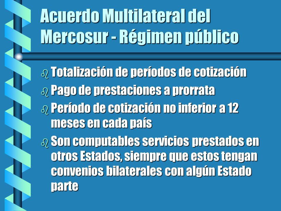 Acuerdo Multilateral del Mercosur - Régimen público