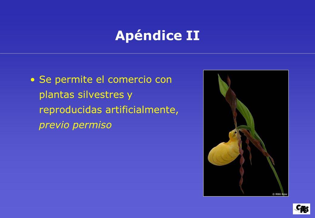 Objetivos y aplicación 11