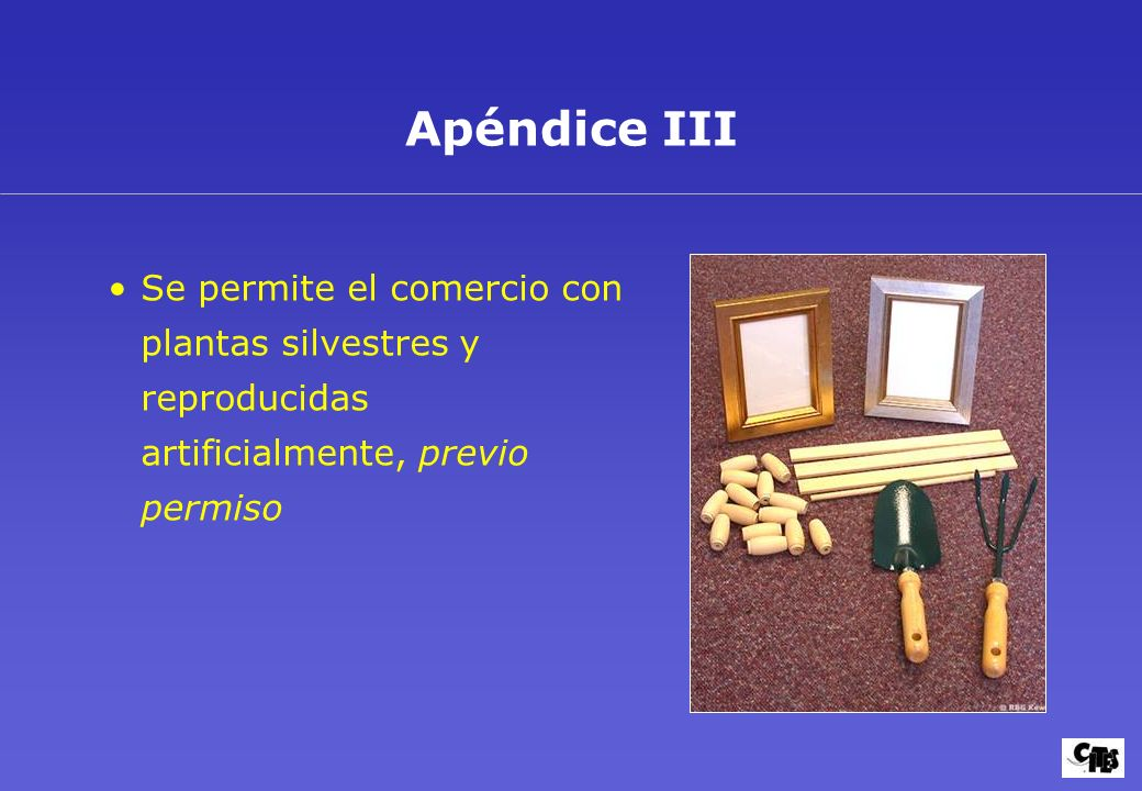 Objetivos y aplicación 12