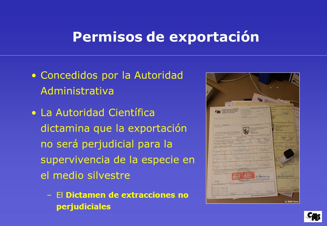 Permisos de exportación