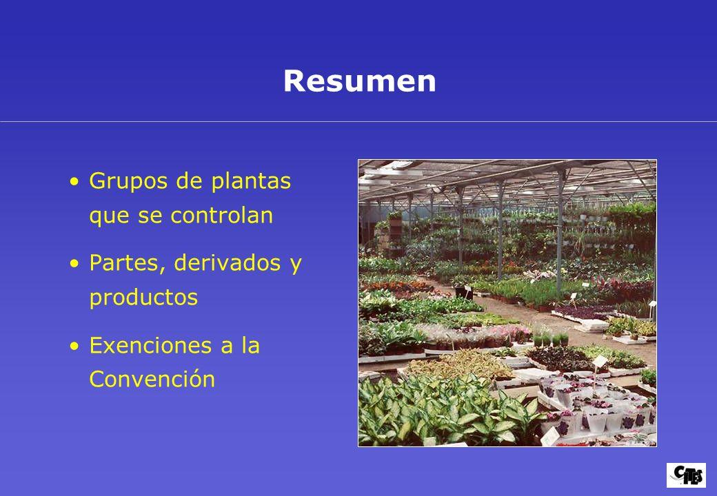 Grupos de plantas amparados por la CITES 37
