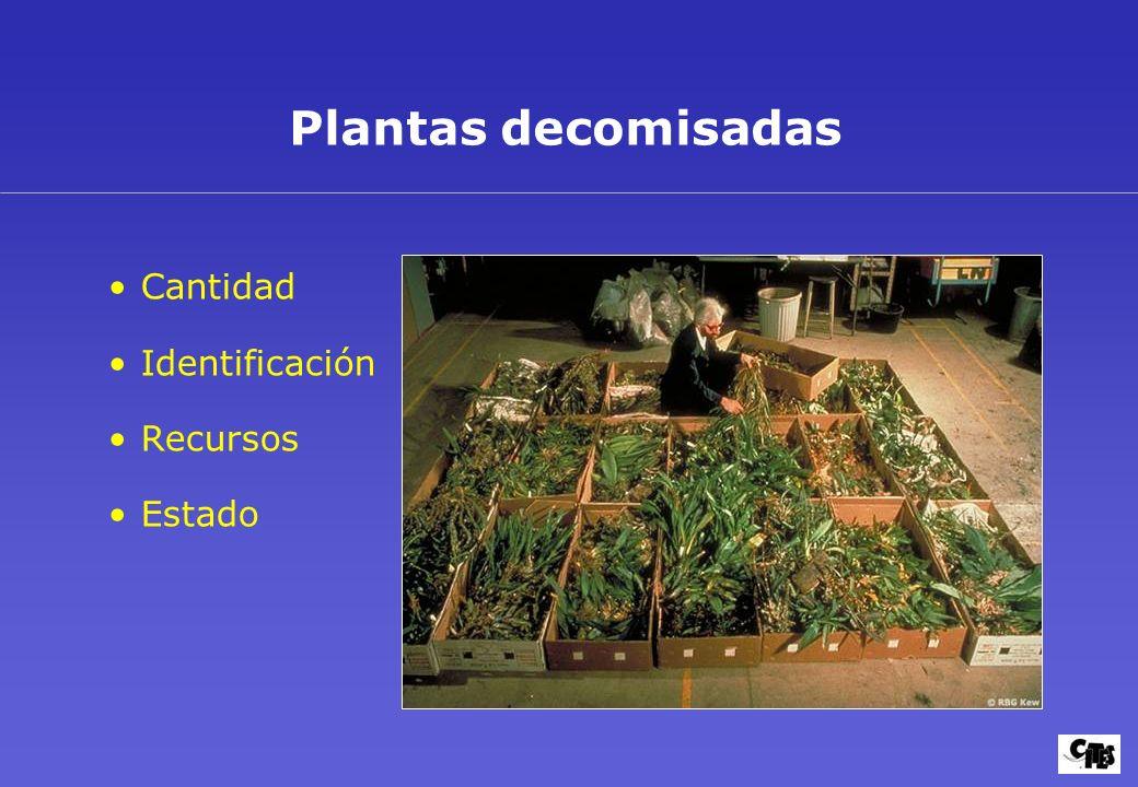 Plantas decomisadas Cantidad Identificación Recursos Estado