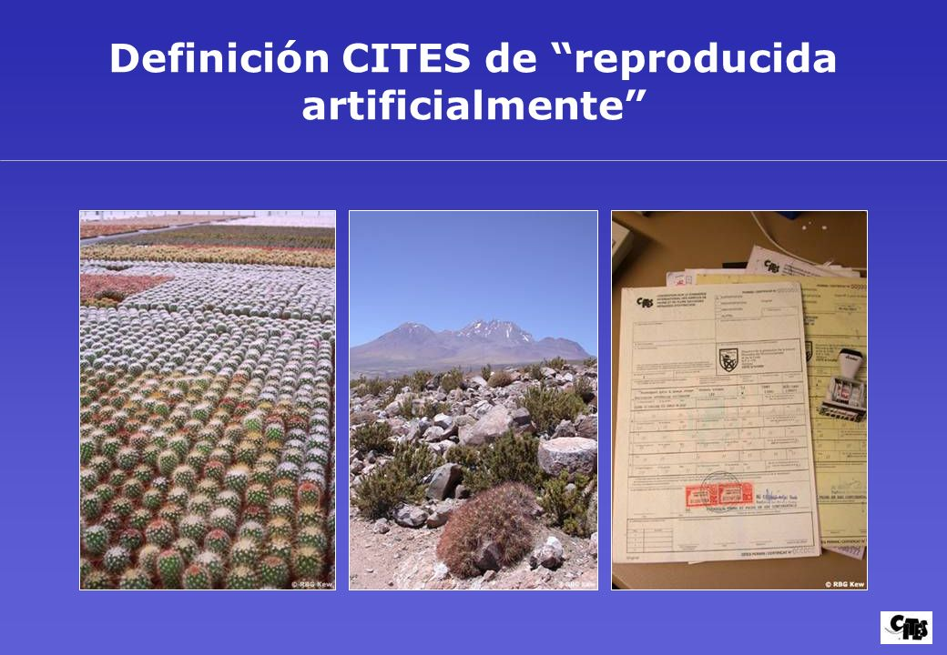 Definición CITES de reproducida artificialmente