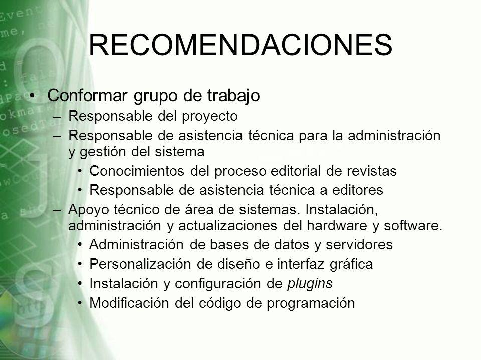 RECOMENDACIONES Conformar grupo de trabajo Responsable del proyecto