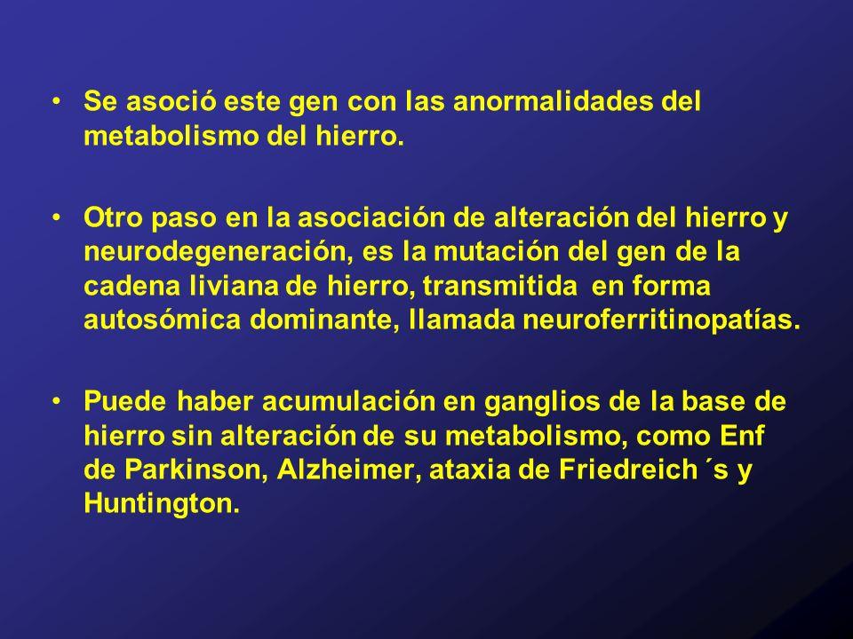 Se asoció este gen con las anormalidades del metabolismo del hierro.