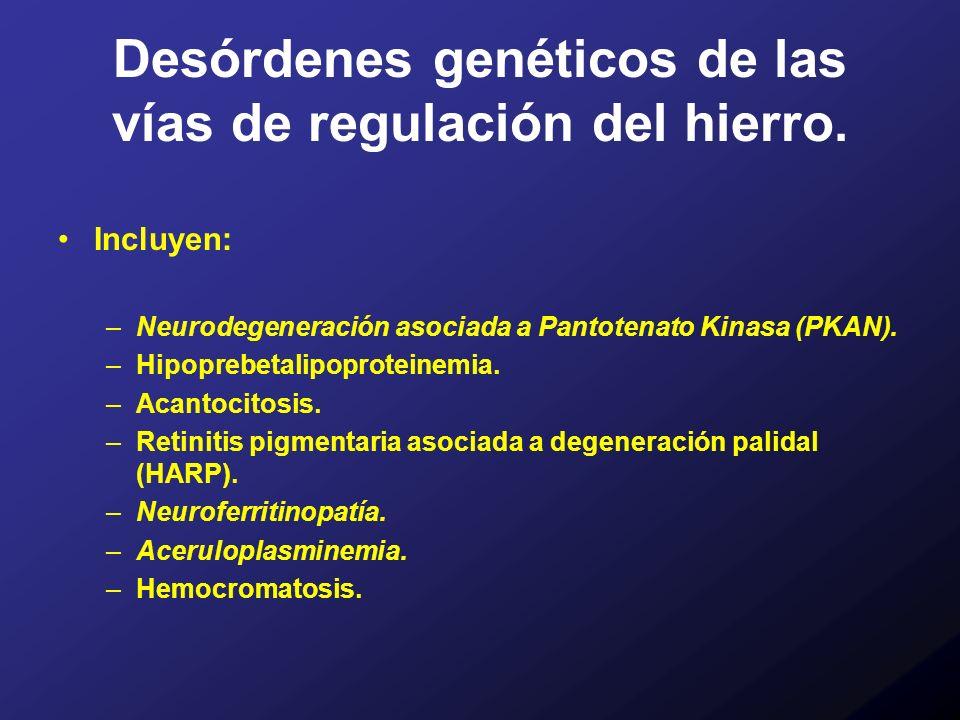 Desórdenes genéticos de las vías de regulación del hierro.