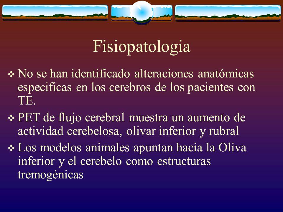 Fisiopatologia No se han identificado alteraciones anatómicas especificas en los cerebros de los pacientes con TE.