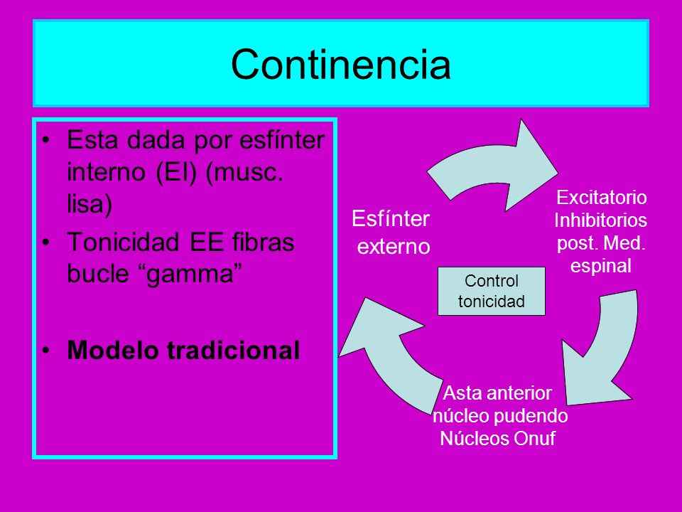 Continencia Esta dada por esfínter interno (EI) (musc. lisa)