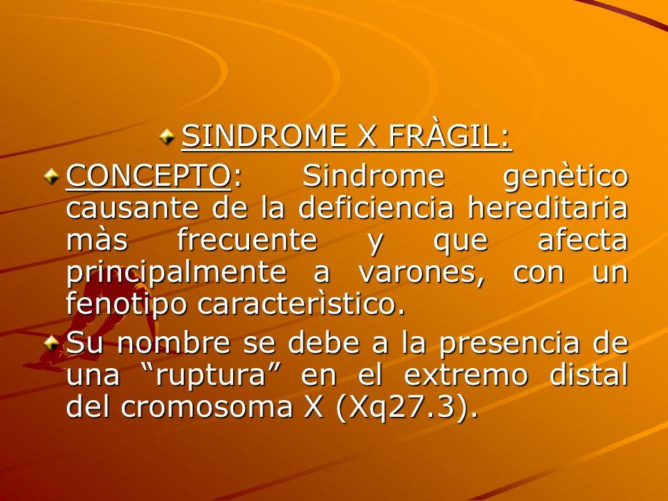 SINDROME X FRÀGIL: